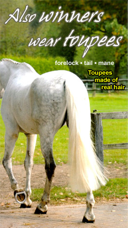 Elly's Team - Toupees